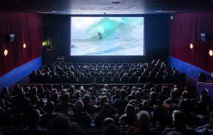 Cork Film Festival 2016 _ phot. Jed Niezgoda www.venividiphoto.net